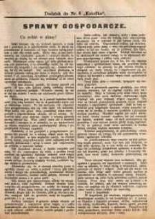 Sprawy Gospodarcze, 1891, nr 2