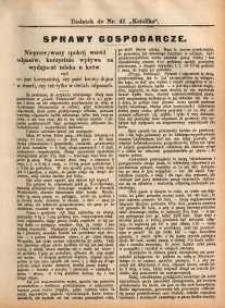 Sprawy Gospodarcze, 1891, nr 6