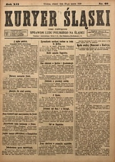Kuryer Śląski, 1920, R. 12 [właśc. 14], nr68