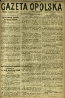 Gazeta Opolska, 1919, R. 29 [właśc. 30], nr 222