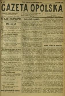 Gazeta Opolska, 1919, R. 29 [właśc. 30], nr 239