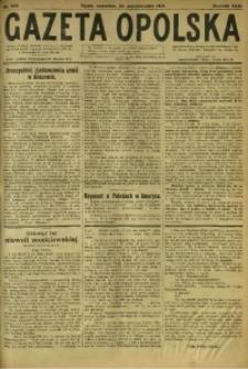 Gazeta Opolska, 1919, R. 29 [właśc. 30], nr 253