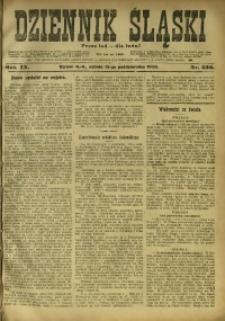 Dziennik Śląski, 1906, R. 9, nr 236