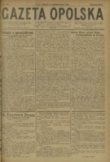 Gazeta Opolska, 1920, R. 30 [właśc. 31], nr 217