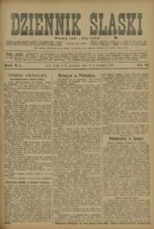 Dziennik Śląski, 1917, R. 20, nr 88
