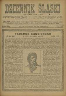 Dziennik Śląski, 1917, R. 20, nr 237
