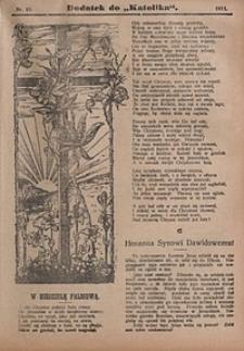 Dodatek do Katolika, 1911, nr15