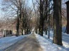 Głubczyce. Ulica Lwowska, 2006 r.