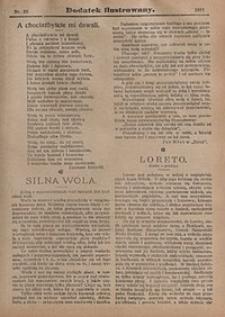 Dodatek Ilustrowany, 1911, nr33