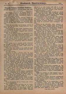 Dodatek Ilustrowany, 1911, nr45