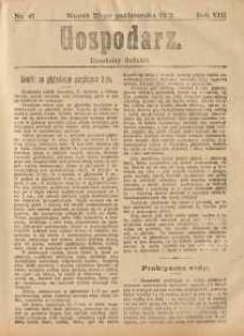 Gospodarz, 1912, nr41