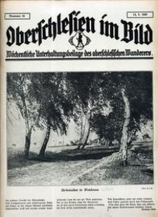 Oberschlesien im Bild, 1925, nr 24
