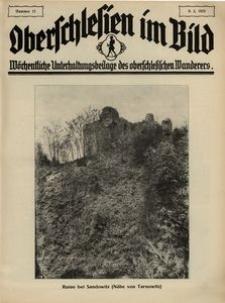 Oberschlesien im Bild, 1928, nr 11