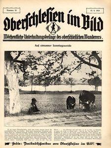 Oberschlesien im Bild, 1928, nr 25