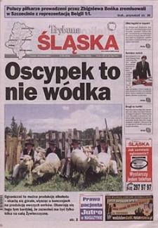 Trybuna Śląska, 2002, nr195