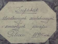 Księga urodzeń, małżeństw i zgonów Pilica 1895