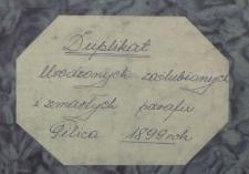 Księga urodzeń, małżeństw i zgonów Pilica 1899