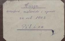 Księga urodzeń, małżeństw i zgonów Pilica 1902