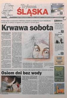 Trybuna Śląska, 2001, nr104
