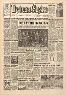 Trybuna Śląska, 1994, nr33