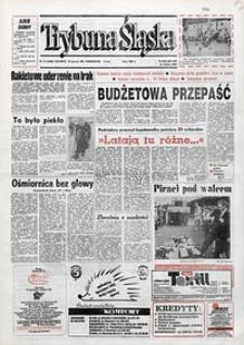 Trybuna Śląska, 1993, nr13