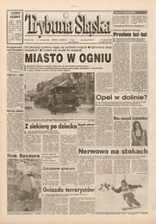 Trybuna Śląska, 1996, nr41