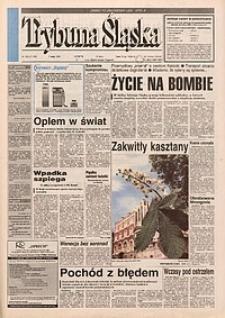 Trybuna Śląska, 1996, nr106