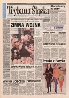 Trybuna Śląska, 1996, nr110
