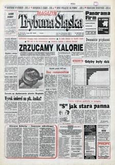 Trybuna Śląska, 1993, nr149