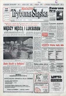 Trybuna Śląska, 1993, nr161
