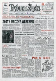 Trybuna Śląska, 1993, nr206