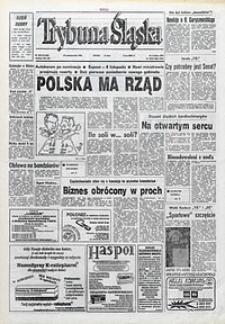 Trybuna Śląska, 1993, nr249