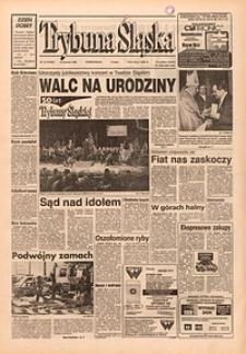 Trybuna Śląska, 1995, nr19