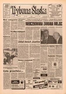 Trybuna Śląska, 1995, nr34
