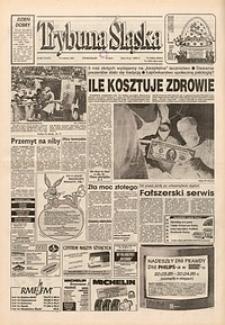 Trybuna Śląska, 1995, nr85