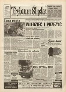 Trybuna Śląska, 1995, nr167