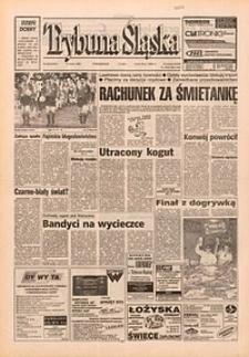 Trybuna Śląska, 1995, nr55