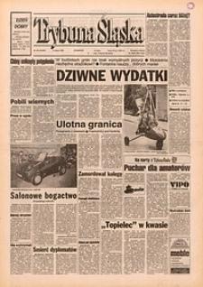 Trybuna Śląska, 1995, nr58