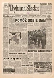 Trybuna Śląska, 1995, nr76
