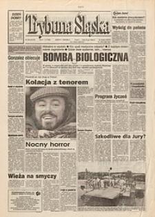 Trybuna Śląska, 1995, nr228