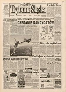 Trybuna Śląska, 1995, nr251