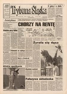 Trybuna Śląska, 1995, nr252