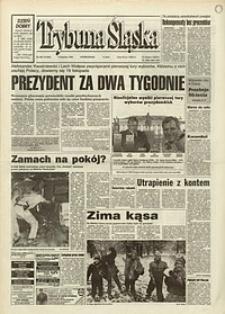 Trybuna Śląska, 1995, nr258