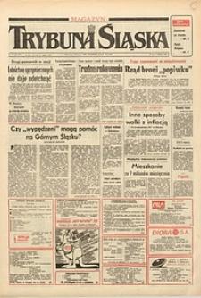 Trybuna Śląska, 1991, nr33