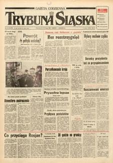 Trybuna Śląska, 1991, nr34