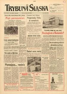 Trybuna Śląska, 1991, nr174