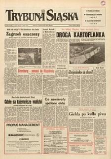 Trybuna Śląska, 1991, nr233
