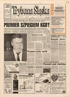 Trybuna Śląska, 1995, nr296