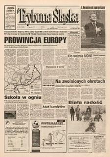Trybuna Śląska, 1995, nr299