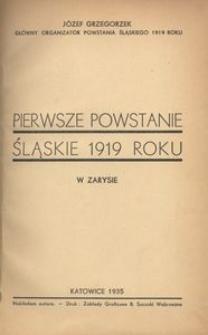 Pierwsze powstanie śląskie 1919 roku w zarysie